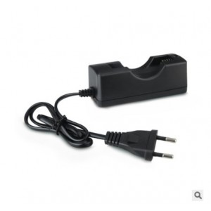 ЗУ для аккумуляторов 18650 TG-198